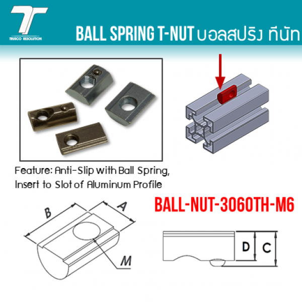 BALL-NUT-3060TH-M6 0